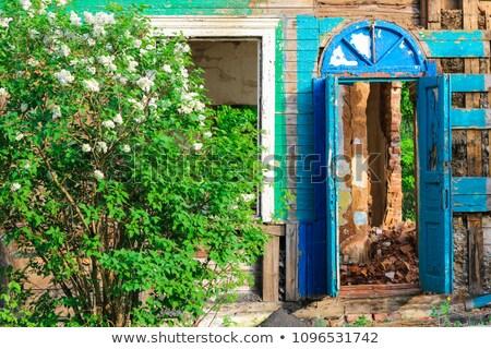 старые разрушенный стены лес красный кирпичная стена Сток-фото © romvo