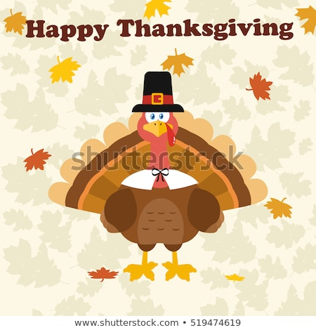 Action de grâces Turquie oiseau pèlerin chapeau Photo stock © hittoon