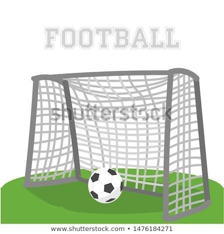 Cartoon calcio cancello isolato bianco erba Foto d'archivio © hittoon