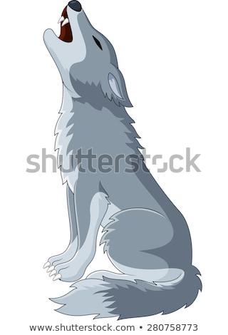 Cartoon wolf najaar illustratie springen Stockfoto © cthoman