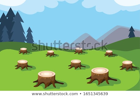 Deforestation scene with firewoods and axe Stock photo © colematt