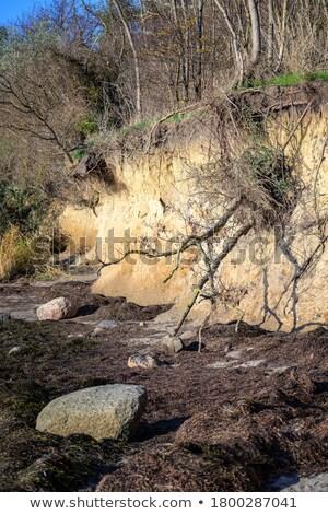 утес побережье острове пейзаж морем песок Сток-фото © LianeM