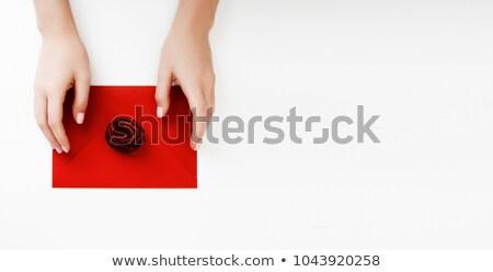 Minimalist moda güzellik fotoğraf sevmek mektup Stok fotoğraf © serdechny