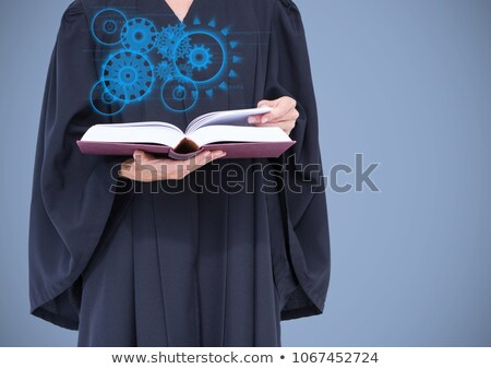 Juiz azul interface livro Foto stock © wavebreak_media