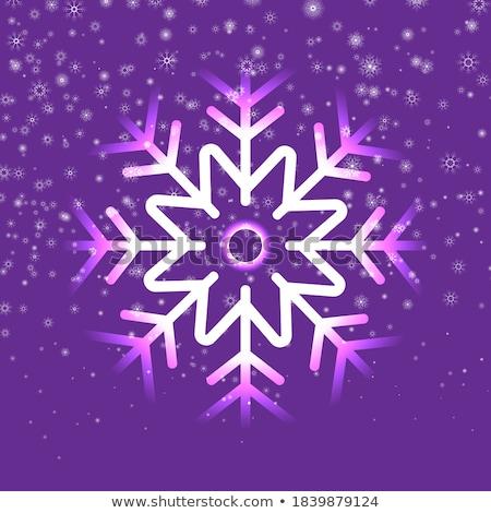 sneeuwval · sneeuwstorm · gestileerde · abstract · illustratie · deuren - stockfoto © swillskill