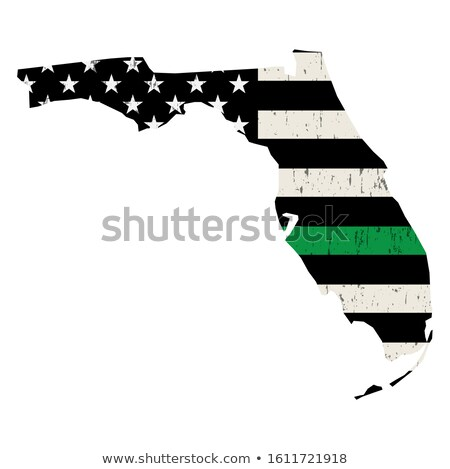 Florida militärischen Unterstützung amerikanische Flagge Illustration Form Stock foto © enterlinedesign