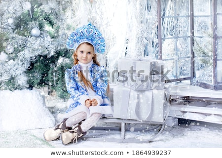Santa Claus and Snow Maiden on Sleds in Forest Stock photo © robuart