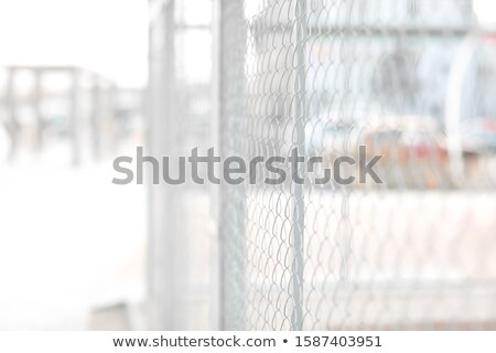 Metal mesh on the street with narrow focus and blurred background Stock photo © ElenaBatkova