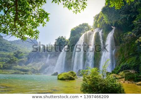 Groot wereld waterval boom illustratie water Stockfoto © bluering