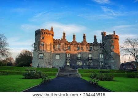 Jardin château Irlande vue arbre vert Photo stock © borisb17