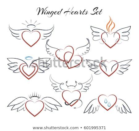 Angyalszárnyak szett gyönyörű tetoválás rajz terv Stock fotó © Zsuskaa
