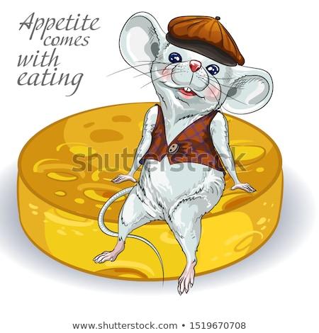 sıçan · peynir · beyaz · gıda · fare · komik - stok fotoğraf © Alkestida
