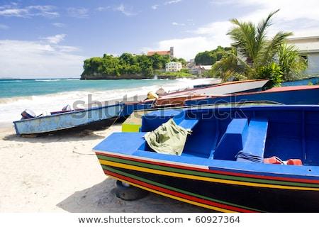Grenada · boom · landschap · zee · zomer · palm - stockfoto © phbcz