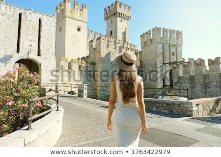 Castle Rear Stock photo © naffarts