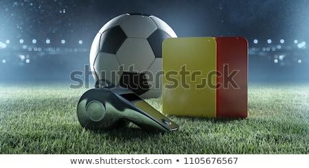 Hakem futbol topu kadın kadın futbol spor Stok fotoğraf © pedromonteiro