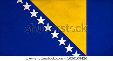 Retro bandera Bosnia Herzegovina grunge edad estilo Foto stock © RedKoala