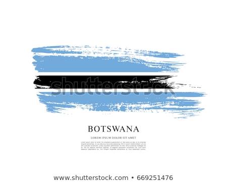 Grunge Botswana Flag Stock photo © speedfighter