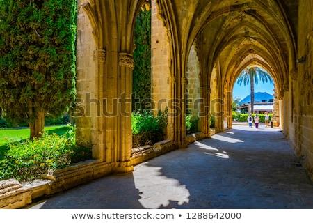 Abdij historisch noordelijk bouw mooie gothic Stockfoto © ruzanna