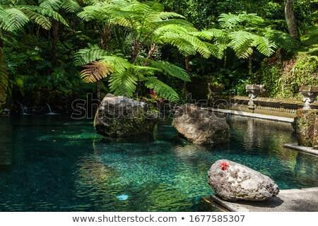 Indonezja bali pływanie kąpieli wodospad Zdjęcia stock © pzaxe