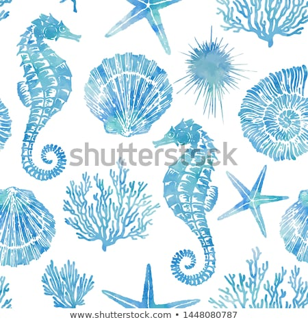 Underwater banners with starfish, vector illustration  Stock photo © carodi