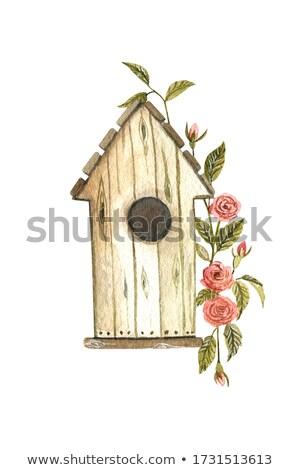 Stock foto: Birds Nest Arrangement