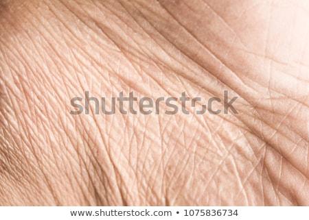 Close up human skin. Macro epidermis  Stock photo © deyangeorgiev