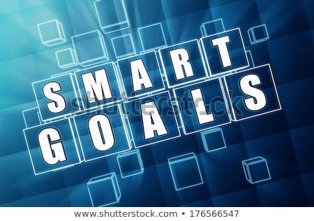 smart goals in blue glass cubes Stock photo © marinini