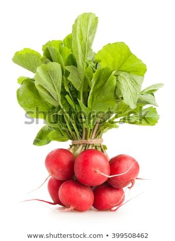 красный · редис · изолированный · белый · продовольствие · зеленый - Сток-фото © tetkoren