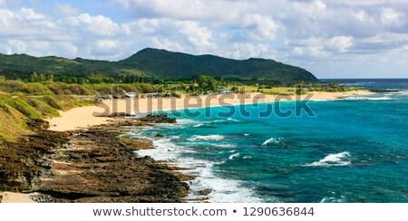 Sandy Beach, Oahu, Hawaii Stock photo © kraskoff