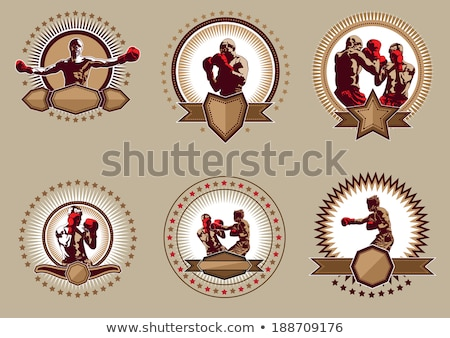 Set of circular combative sport icons or emblems Stock photo © Porteador