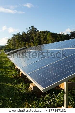 Large solar power installation in tropics Stock photo © backyardproductions