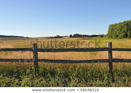 Sky, clouds and old wooden fence stock photo © trala