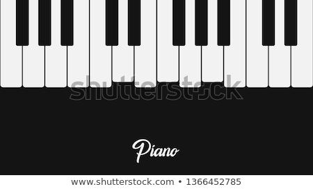 Kleurrijk pianotoetsen 3D gegenereerde foto muziek Stockfoto © flipfine