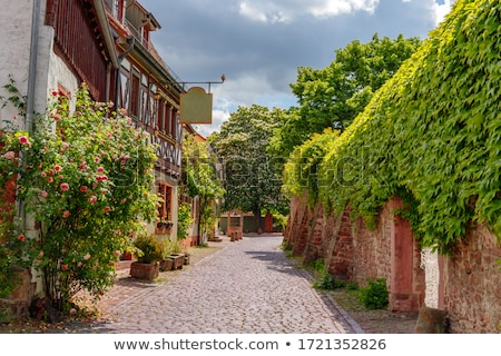 狭い · 通り · 古い · 村 · 道路 · 建物 - ストックフォト © meinzahn