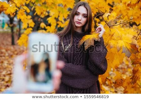 cute · bruna · posa · uomo · capelli · finestra - foto d'archivio © feedough