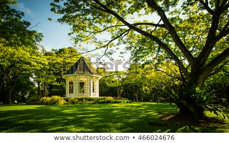 The Bandstand in Singapore Botanic Gardens. stock photo © tang90246