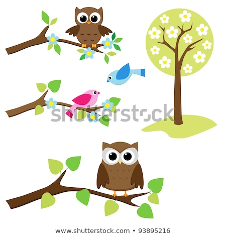 Owl sits on tree branch. Graphic design Stock photo © orensila
