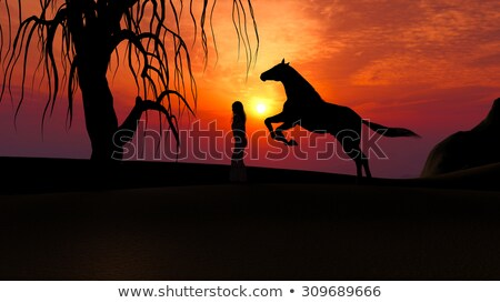 Horse Running under Sunset in the Desert with woman silhouette Stock photo © ankarb