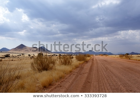panorama of fantrastic namibia moonscape landscape stock photo © artush