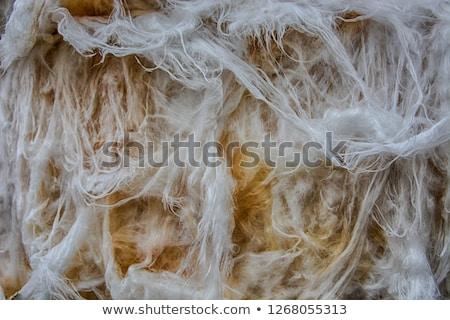 Vetro lana macro dettaglio materiale texture Foto d'archivio © stevanovicigor