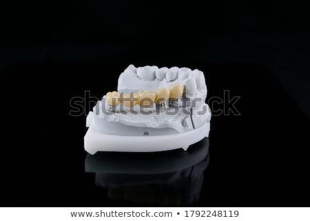 Makro köprü diş siyah tıp Stok fotoğraf © stockfrank