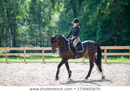Woman in Riding School stock photo © artfotodima