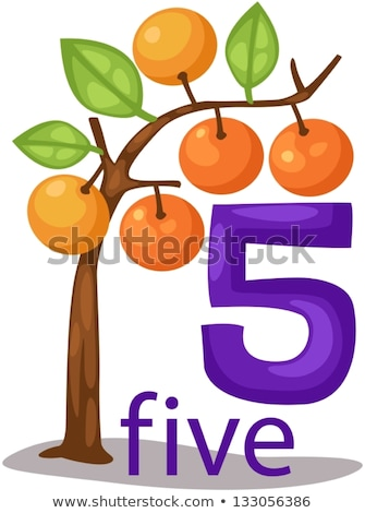 Számok narancsfa illusztráció háttér művészet oktatás Stock fotó © bluering