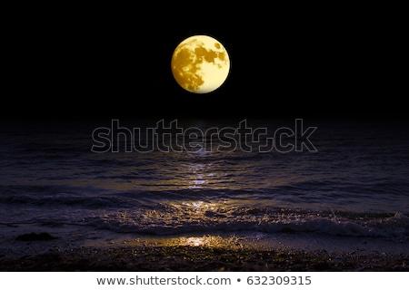 Telihold tó tengerpart naplemente természet tájkép Stock fotó © digoarpi
