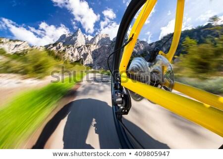 Mountainbike fiets fiets keten versnelling wiel Stockfoto © njaj
