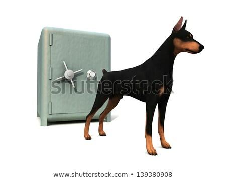 Chien de garde investissements illustration bulldog mascotte Photo stock © patrimonio