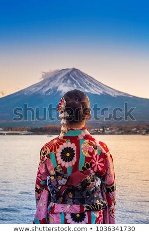 Japonês gueixa pôr do sol ilustração flores silhueta Foto stock © adrenalina