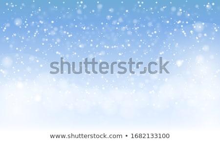 Kış doğal güneşli kar düşen Stok fotoğraf © FOTOYOU