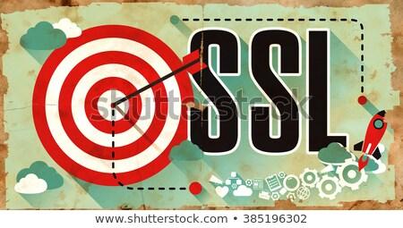 Ssl grunge cartaz proteger soquete camada Foto stock © tashatuvango
