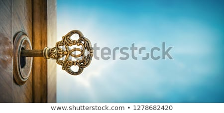 Secret - Blue Key. Stock photo © tashatuvango